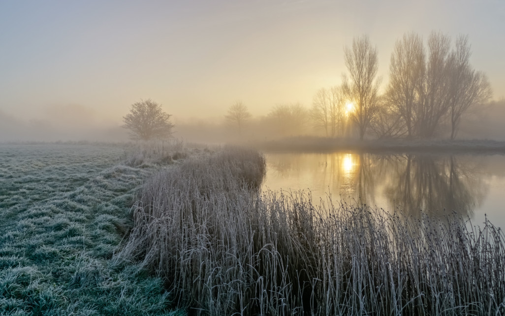 Frosty Bure Park at Sunrise