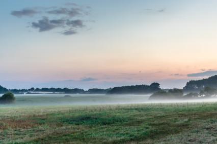 Reydon Mist