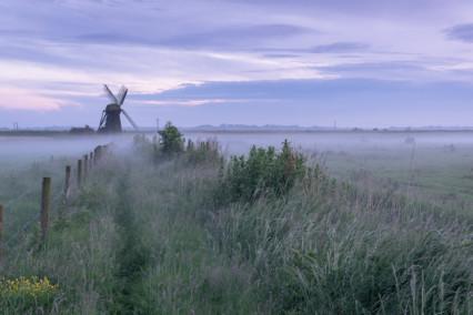 Misty Herringfleet Mill